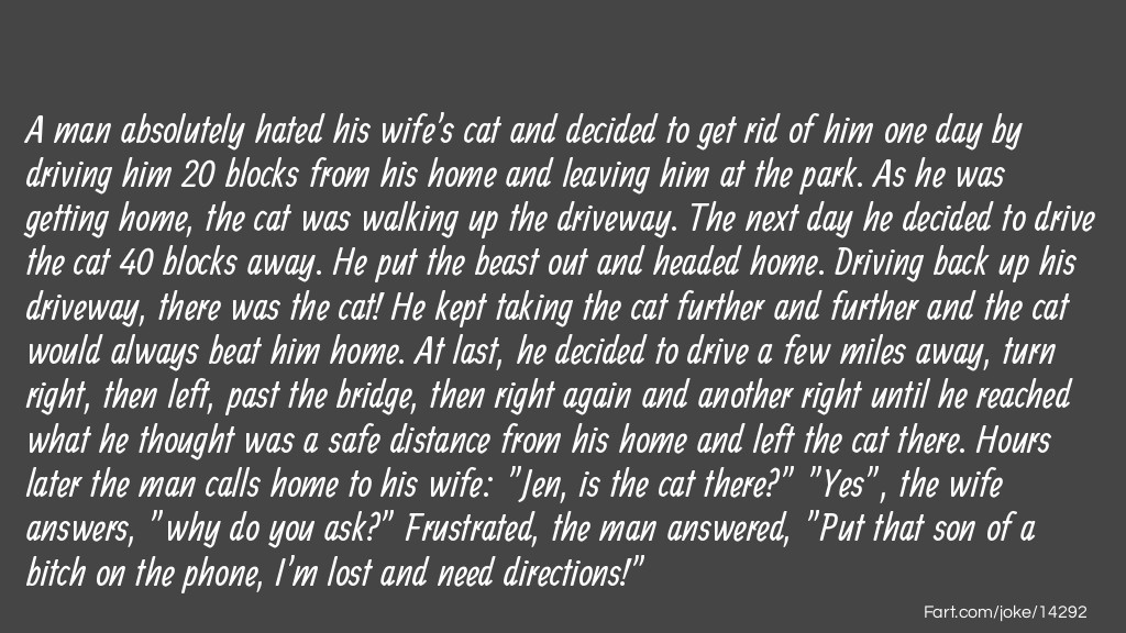 The Wife's Cat Joke Joke Meme.