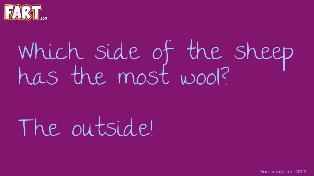 Sheep Wool Joke Joke Meme.