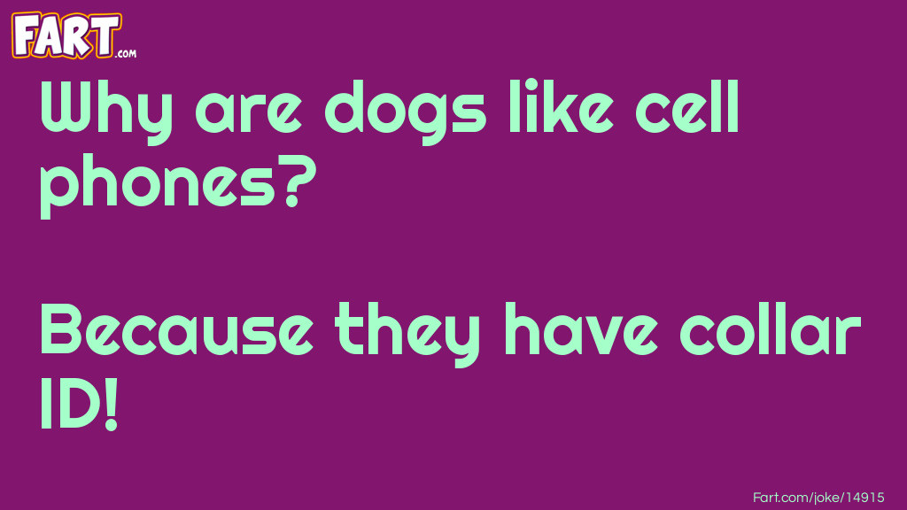 Dogs Like Cell Phone Joke Joke Meme.